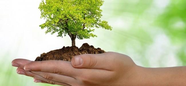 El medio ambiente y la tecnología