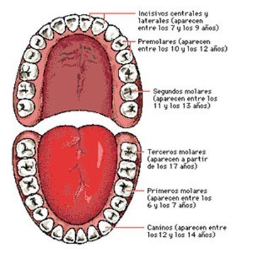 foto_dental_04_thumb